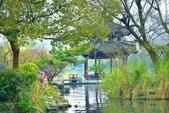 江南遊&杭州西湖:杭州西子湖 (7).jpg