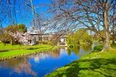 基督城雅芳河:紐西蘭雅芳河 (20).jpg