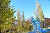 河口湖&八木崎公園:八木崎公園 (17).jpg