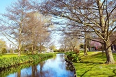 基督城雅芳河:紐西蘭雅芳河 (10).jpg