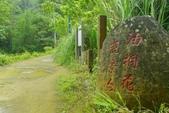 小粗坑步道:小粗坑步道 (1).jpg