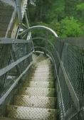 大雪山國家森林公園露營:A013.jpg