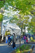 上野恩賜公園:上野公園 (20).jpg