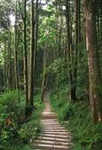 大雪山國家森林公園露營:A014.jpg