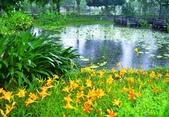 勝洋水草休閒自然農場:S019.jpg