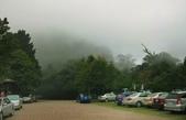 大雪山國家森林公園露營:A016.jpg