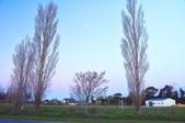 紐西蘭天空塔:紐西蘭 (14).jpg