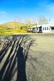 卡瓦勞大橋.卡瓦拉河:紐西蘭高空彈跳 (6).jpg