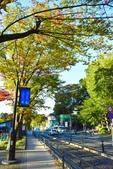 上野恩賜公園:上野公園 (12).jpg