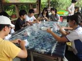 1030701溪流與生態冒險探索體驗營:DSCN9488.JPG