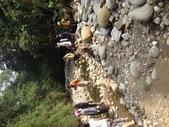 1030628溪流探索與社區體驗:IMG_7493.JPG
