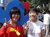 2008/11_政大包種茶節:乖乖