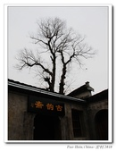 中國畫里的鄉村-宏村:nEO_IMG_DSC_8539-1ss.jpg