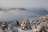 2010冬遊黃山:DSC_9226.jpg