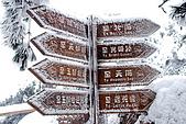 2010冬遊黃山:DSC_9414-1.jpg