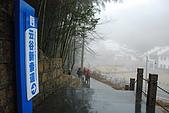 2010冬遊黃山:DSC_8799.jpg