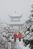 2010冬遊黃山:DSC_9144.jpg