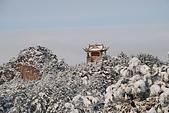 2010冬遊黃山:DSC_9253.jpg