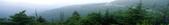 沁心園茶鋪~濃醇香的好紅茶no.1~big~紅茶部落 【沁心園全國最大聯播團隊~網路行銷平台資訊網】:1647821332.jpg