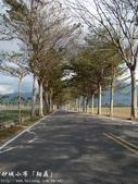 台東風景(by小布):1633210598.jpg