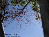 台東風景(by小布):1633210594.jpg