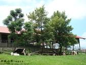 台東風景(by小布):1633216942.jpg
