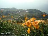 台灣風景(by小布):1122159643.jpg