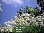 瑪陵坑富民親水公園:1.jpg