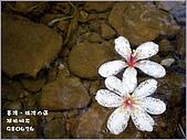 瑪陵坑富民親水公園:6.jpg
