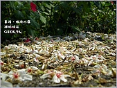 瑪陵坑富民親水公園:avatar.jpg