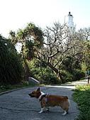 白沙岬燈塔:IMGP2875-1.jpg