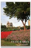 古亭河濱公園 地景花海:IMG_0199_副本.jpg