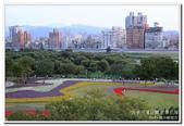 古亭河濱公園 地景花海:IMG_0287_副本.jpg