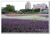 古亭河濱公園 地景花海:IMG_0237_副本.jpg
