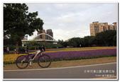 古亭河濱公園 地景花海:IMG_0241_副本.jpg