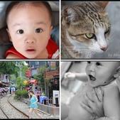 2013猴硐貓村:相簿封面