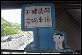 2013猴硐貓村:2013-08-11010.jpg