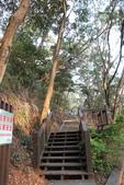 100.12.30橫山步道:DPP橫山步道03.JPG