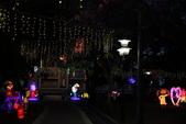 107.2.26中山花燈:107.2.26-10.JPG