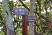 100.12.30橫山步道:DPP橫山步道06.JPG