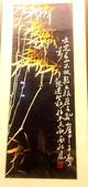 101.7.1四川博物館and寬窄巷:DPP四川博物館14.JPG