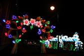 107.2.26中山花燈:107.2.26-31.JPG