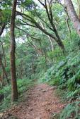 100.12.30橫山步道:DPP橫山步道02.JPG