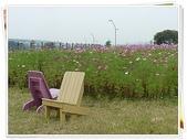 (yahoo)疏洪荷花公園。幸福水漾公園。微風運河:P1430360.JPG