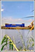 北北基之旅:新海濕地_191215_0014.jpg
