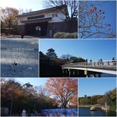 2015日本京阪自由行:2015京阪自由行D5008