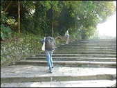 (yahoo)陽明山公園。小油坑。擎天崗。冷水坑:P1460062.JPG