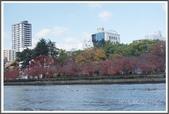 2015日本京阪自由行:2015京阪自由行D50024