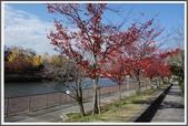 2015日本京阪自由行:2015京阪自由行D5002