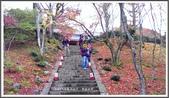 2015日本京阪自由行:2015京阪自由行手機版Day3 29